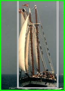 Display results 220 [n04147183 - schooner]